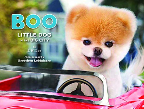 Boo: Little Dog in the Big City (Boo the Dog)