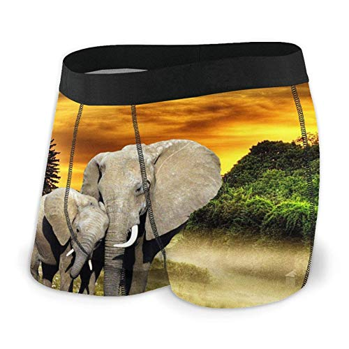LREFON Slip Intimo da uomo con elefanti Intimo Normale, morbido e traspirante, confortevole
