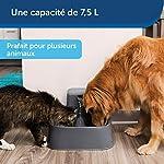 PetSafe Fontaine Drinkwell 7,5 litres Adaptée aux Grandes Races de Chiens et Plusieurs Animaux de Compagnie, Différents flux - Filtres anti-odeurs et mauvais goût inclus – Facile à Nettoyer - Sans BPA #2