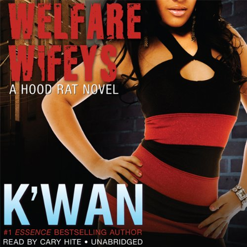 Welfare Wifeys audiobook cover art