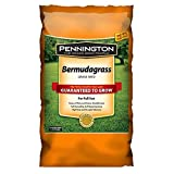 Best Bermuda Grass Seeds - Pennington Seed 15 lb Bermuda Grass Seed Review