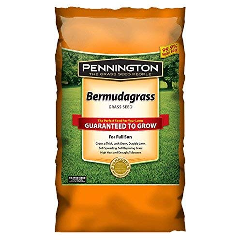 Pennington Sahara Bermudagrass Grass Seed, for Southern Lawns; 15 Pound Bag
