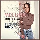 Tineretea (Sloupi Remix)