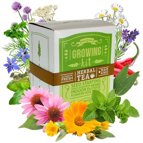 Medicinal & Herbal Tea Indoor Herb Garden Starter Kit - Premium...