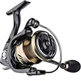 OIIAEE Spinning Reel,10+1 Stainless BB Fishing Reel,Ultra Smooth Powerful, Lightweight Graphite Frame, CNC Aluminum Spool for Saltwater Freshwater