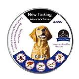 XINLINTRA Repellenti per Insetti per Gatti Cane Collare antipulci pulci e zecche Collare per Cani Regolabile Impermeabile Proteggere per Gatti e Cani (L(63.5cm))
