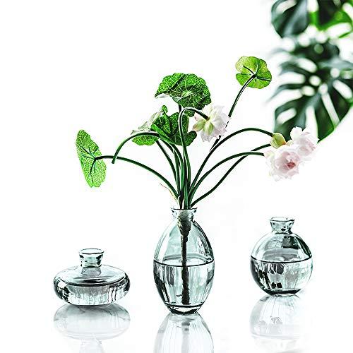 YY Juego de 3 jarrón de cristal rústico pequeño en varias formas,...