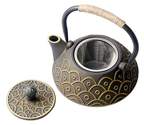 HwaGui Teiera in Ghisa Giapponese con Teiera Infusore per Tè Sfuso, teiera tetsubin fa Bollire acqua o tè (4 tazze) 800ml