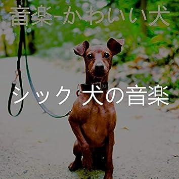 音楽-かわいい犬