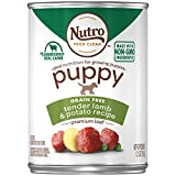 Nutro Puppy Dog Food