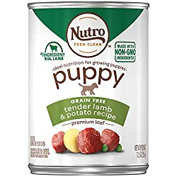 Nutro grain free puppy food