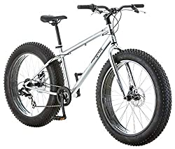 The 5 Best Fat Tire Bikes 13