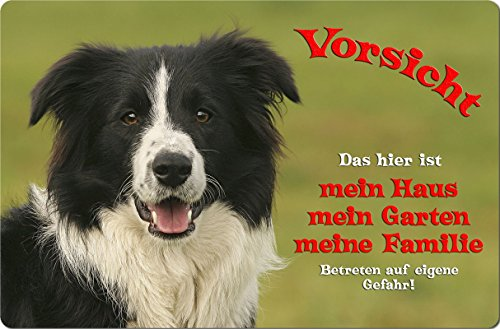 +++ BORDER COLLIE - Metall WARNSCHILD Schild Hundeschild Sign - BOC 15 T1
