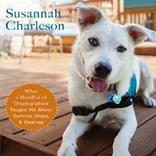 The Possibility Dogs audiobook cover art