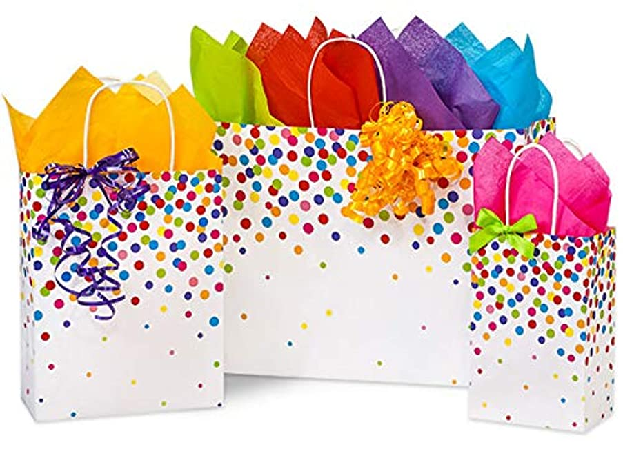 Made in USA Rainbow Confetti Paper Shopping Bags (3 Sizes) with Tissue Paper - 100% Recyclable