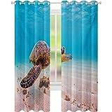 Cortinas para ventanas con diseño de tortuga marina verde hawaiano en aguas cálidas del océano Pacífico, cortinas opacas de 52 x 84 para habitación de los niños, color marrón