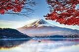 Fuji Posters