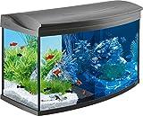 Tetra AquaArt Evolution Line LED Acuario 100 L - Set completo (incluso...