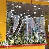 HH- Lona alquitranada, Lona Transparente Impermeable A Prueba De Lluvia, Lonas Transparentes De PVC For Cubierta De Aislamiento Vegetal/Toldo For Acampar Al Aire Libre - 350 G / ㎡ (Size : 2.4×3m)