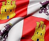 Oedim Bandera de La Comunidad de Castilla y León 85x150cm | Reforzada y con Pespuntes| Bandera de La Comunidad de Castilla y León con 2 Ojales Metálicos