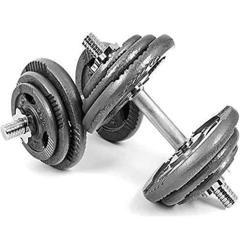 Xylo Kurzhantel 40kg (2x20) Gusseisen Hantelset Hanteln Eisen Gewichte Hantel Set Hantelscheiben Krafttraining Sternverschlüsse Kurzhantelset Eisen GRAU Grip