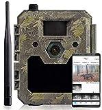 icuscerver Cámara de Caza visión Nocturna icucam 4G - Fototrampeo con Detector de Movimiento, transmisión de teléfono móvil - Rango de 40 Metros - Tiempo de liberación de 0.3 Segundos