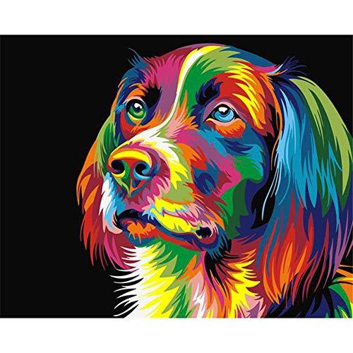 JHDGL Pintar por Numeros Adultos Cabeza Perro Color DIY Pintura de Lona 40x50cm para Niños con Pinturas Acrílicas y 3 Pinceles(Sin Marco)