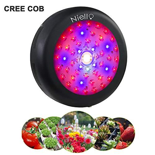 Niello Cree COB Led Pflanzenlampe 300W UFO Led Grow Light Vollspektrums Pflanzen Licht mit Schalter UV IR für Innenanlagen, Hydrokultur, Gewächshaus, Sukkulenten, Blumen, Setzlinge Ziehen