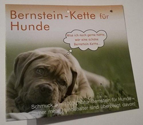 Nordschmuck Bernstein-Halsband für Hunde