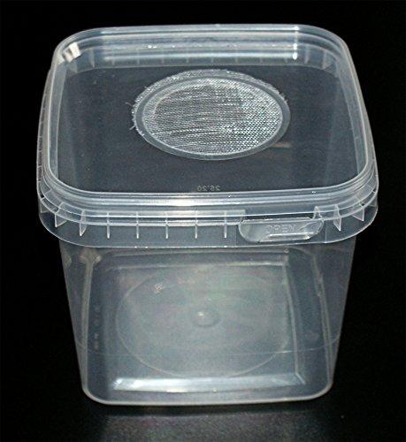Insect Box 1,2L Zuchtbehälter Drosophilazucht, Fruchtfliegen, Spinnenzucht mit Gaze Deckel, Heimchendosen