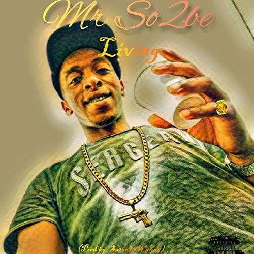 Mr So2be