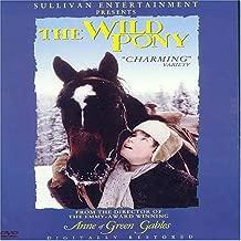 The Wild Pony by Sullivan Entertainment