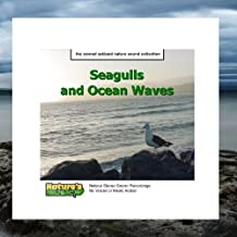 Seagulls and Ocean Waves