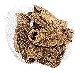 sphagnum-shop.com Corcho, corteza de corcho natural, 15 – 20 cm de largo, 6 – 7 piezas, corteza de corcho natural, terrario, decoración