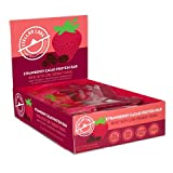 Stellar Labs Strawberry Cacao Protein Bar, Non-GMO, Gluten Free, Vegan, No Sugar Alcohols, Made with Low-FODMAP Ingredients, 1.83oz, Pack of 12