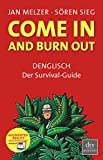 Jan Melzer, Sören Sieg: Come in and burn out