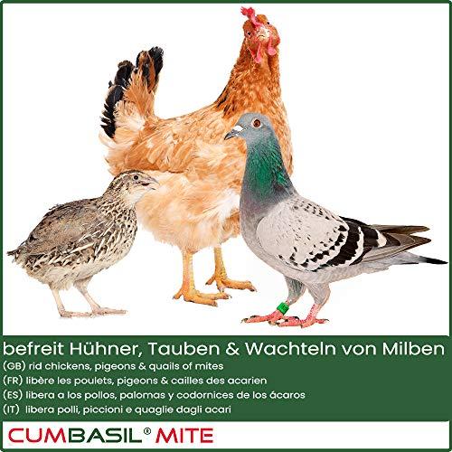 Cumbasil Mite Milben Staubbad - 4