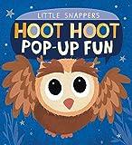 Hoot Hoot Pop-up Fun (Little Snappers)