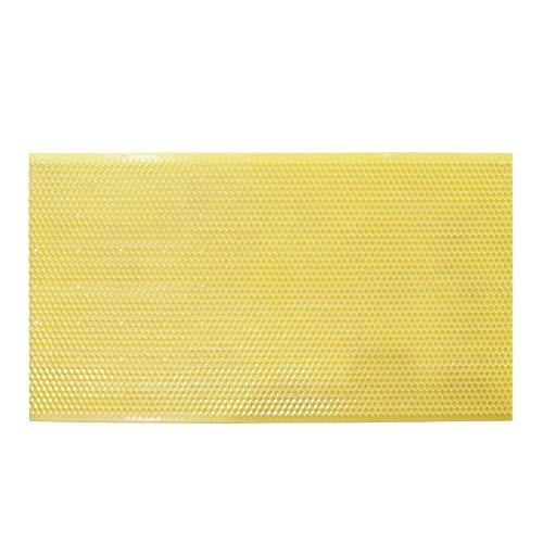 Base de plástico para peine Apis Melsalva, 5 unidades