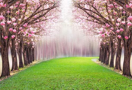 Fondos de Retrato de niño romántico con Forma de pétalo de árbol de Flores Rosadas para Estudio fotográfico A13 5x3ft / 1,5x1 m