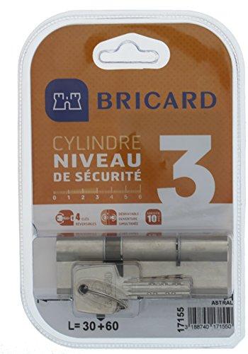 Bricard 17155 Cylindre Débrayable Astral 2,9 en Laiton 10 Pistons, 2 entrées 30+60, Protection Contre Le perçage et Le crochetage. Carte personnelle, Acier Nickelé, 90