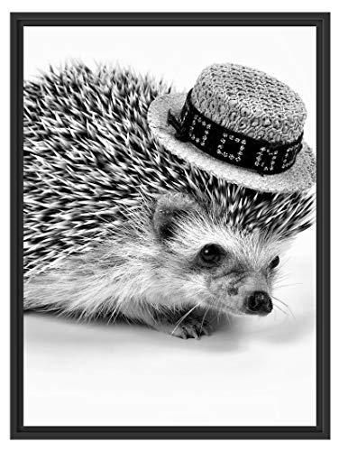 Picati Lustiger Igel mit Hut im Schattenfugen Bilderrahmen   Format: 80x60   Kunstdruck auf hochwertigem Galeriekarton   hochwertige Leinwandbild Alternative