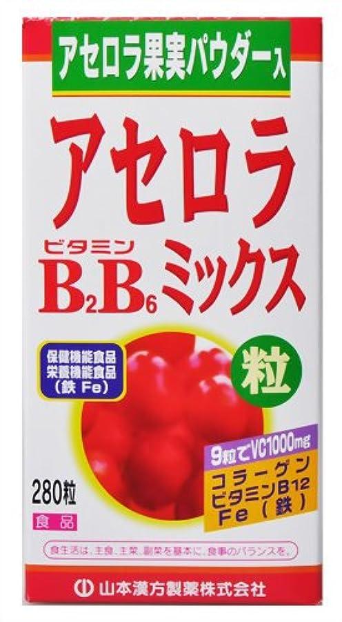 トピック分散バーベキューアセロラビタミンB2B6ミックス粒 280粒