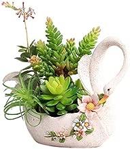 SweetLifeIdea Resin Swan Flower Planter Succulent Plant Pot Cactus Pot Flower Pot Container Bonsai Pot Gift Idea