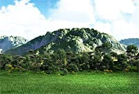 HiYash 8x6.5ft春の風光明媚なビニール写真の背景果樹園緑豊かな森の木緑山々青空白い雲背景風景壁紙スタジオの小道具