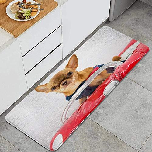 ZhangyJ Alfombra Lavable de Cocina,Disfraz Perro Chihuahua Rojo Coche Divertido,Alfombra Antideslizante,Suave y sper Absorbente,para Puerta de Cocina,bao,47.2'x17.7'
