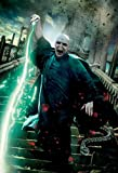 Import Posters Harry Potter Deathly Hallows Part 2 –