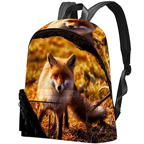 wuqiandian Zaini per donna Uomo Borsa da viaggio Zaino volpe rossa nel sole della foresta Zaino College