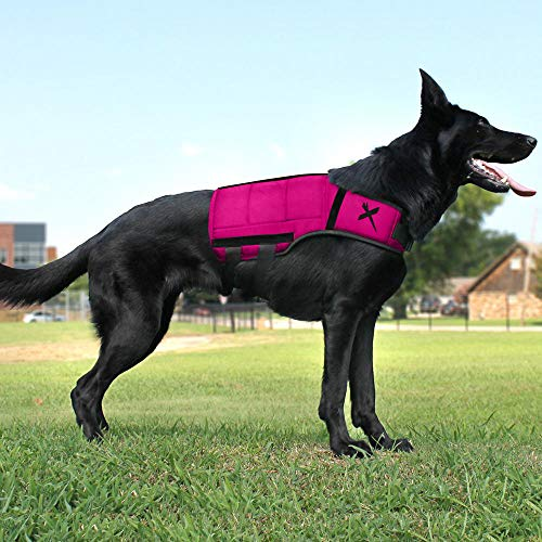 Xdog Weight Vest for Dogs, Durable Exercise Dog Vest