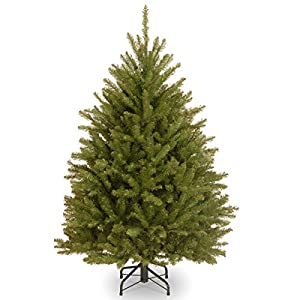 National Tree Company Artificial Christmas Tree | Includes Stand | Dunhill Fir – 4 ft